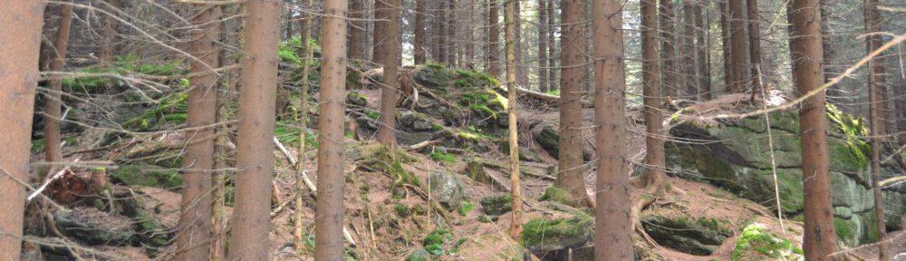 LOK-o Liberec
